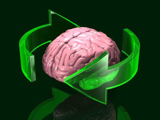 Cerveau et système vestibulaire dans la scoliose