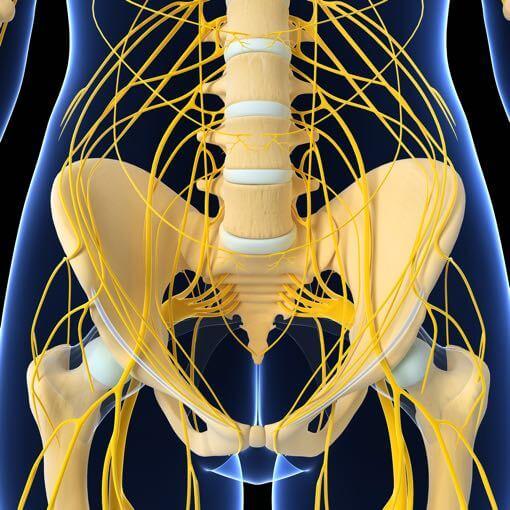 Traitement des lombalgie, sciatique par la chiropraxie