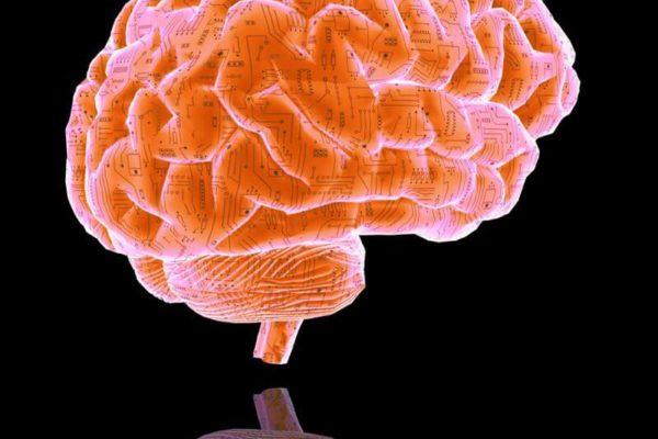 Manipulation vertébrale et effets sur fonctionnement du cerveau