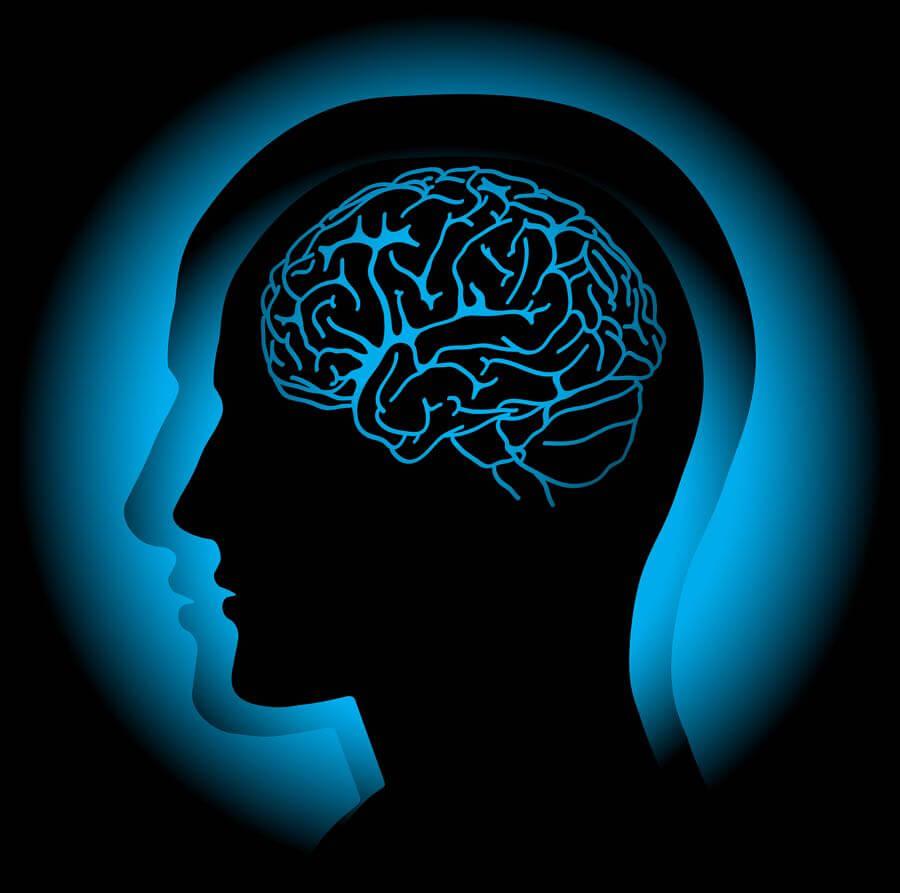 Vertige est l'interprétation du cerveau de l'info venant de l'oreille interne